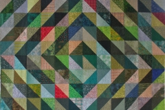 Green Catcher Quilt